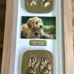 Framed full set of casts with photo